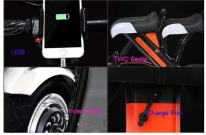 Hot Sale Folding E Bike with Lithium Battery pictures & photos