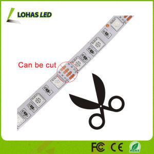 DC12V AC220V Flexible LED Strip Light 60 LED/Meter 5m/Roll LED Rope Light with Remote Controller pictures & photos
