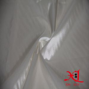 100% Nylon 20d Downproof Waterproof Fabric for Down Jacket/Light Windbreaker pictures & photos