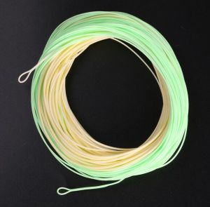Best Choice Weight Forward Fly Fishing Lines pictures & photos