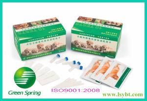 Lsy-20037 Canine Distemper Virus Antigen Rapid Test Card 10tests/Kit