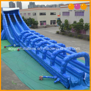 Inflatable Amazing Waterslide pictures & photos