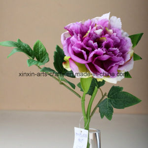 Cheap Peony Artificial Flowers Decorative Flowers Real Touch Flowers pictures & photos