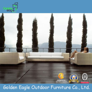 Stylish Nature Color Outdoor Sofa Sets (TY0010)