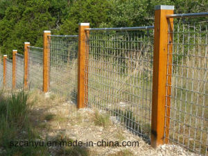 Cheap Wire Fence/Decorative Wire Fence for Sale pictures & photos