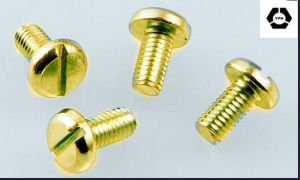 DIN 85 Alloy Steel Slotted Pan Head Screws with Yellow Zinc pictures & photos