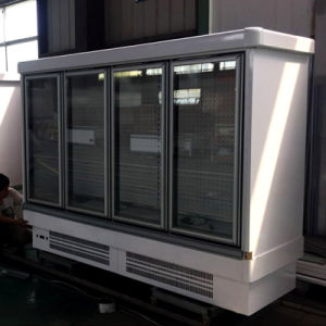 Supermarket Plug in Vertical Glass Door Freezer pictures & photos