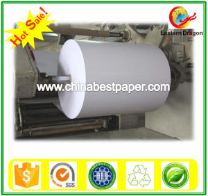 Grade AA Paper Cup Base Paper pictures & photos