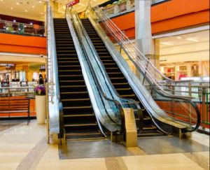 Indoor Outdoor Shopping Mall 30 35 Escalator pictures & photos