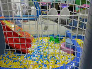 Indoor Playground Type and Inflatable Playground Material Indoor Soft Playground pictures & photos