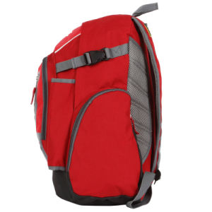Red Castle Sport Backpacks Sh-42412 pictures & photos