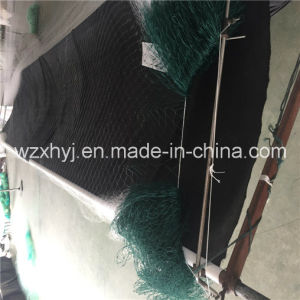 PE 4 Mesh Double Selvage Monofilament Fishing Net pictures & photos