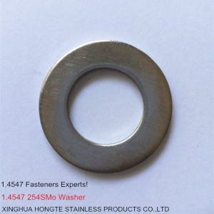 254smo 1.4547 Uns S31254 Flat Washers pictures & photos
