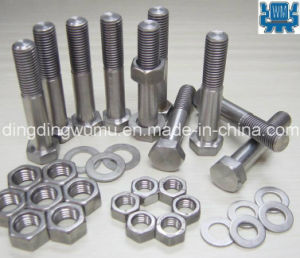 Pure Molybdenum Nut/Washer/Bush pictures & photos