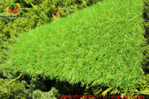DIY Easy Installed Outdoor Artificial Lawn 20mm pictures & photos