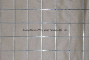 Wholesale Cheap Welded Wire Mesh Stainless Steel Welded Wire Mesh pictures & photos