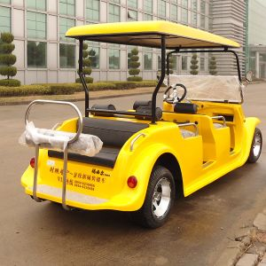 Newest 6 Seats Electric Classic Car with CE Certificate for Latifundium (DN-6D) pictures & photos