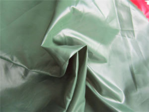 20d Nylon Taffeta Fabric for Down Coat (XSN005) pictures & photos
