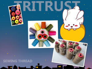 Polyester Sewing Thread for Leather Stitching (20s/2/3) pictures & photos