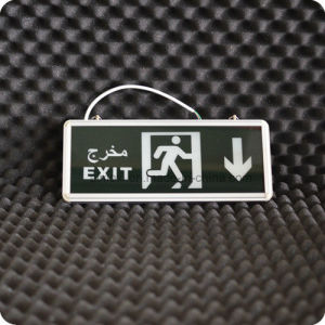 Best Price LED Emergency Exit Light/Arabic Letter Exit Light