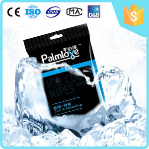 Hot Sale Ice Cool Wet Wipes pictures & photos
