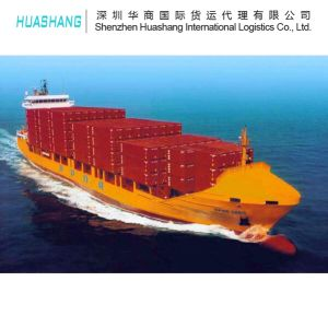 Sea Freight Shipping Car Plastic Export to Middle East From China pictures & photos