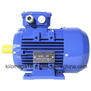 Three Phase Cast Iron Electric Motor 0.75kw-280kw pictures & photos