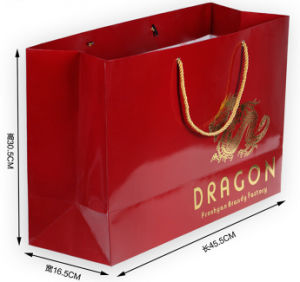 Red Glossy Printing Shopping Bag with Golden Logo (PA-034) pictures & photos