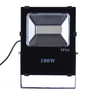 100W Flood Light with Slim Housing pictures & photos
