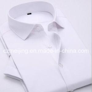 Cotton Men′s Shirt