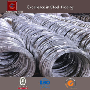 Hot DIP Galvanized Steel Wire for Garden (CZ-W10) pictures & photos