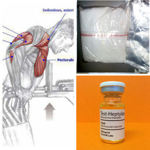 Improving Sexual Function Anabolic Steroid Methenolone Acetate Primobolan pictures & photos