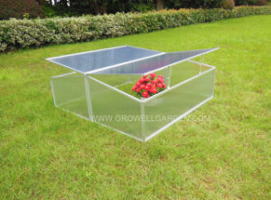 Double Window Small Greenhouse for Young Plants (CF302) pictures & photos