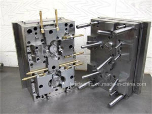 Precious Plastic Injection Mold/Mould for Comsumer Product in China (LW-03629) pictures & photos