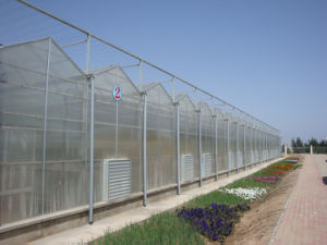 Polycarbonate Sheet Greenhouse with UV Protect 10 Years Guarantee pictures & photos