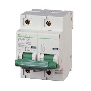 Miniature Circuit Breaker 1p Dz47-100h pictures & photos