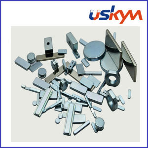 N52 Strong NdFeB Magnet Neodymium Magnet Motor Magnet pictures & photos
