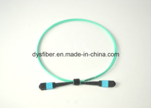 Elite Loss 24f MTP-MTP Fiber Patch Cord pictures & photos