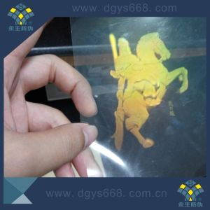 Highly Complicated Comprehensive True 3D Hologram Security Stickers pictures & photos