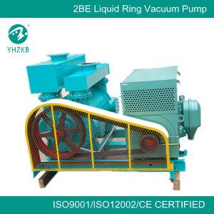 Big Liquid Ring Vacuum Pump for Mining Industry pictures & photos