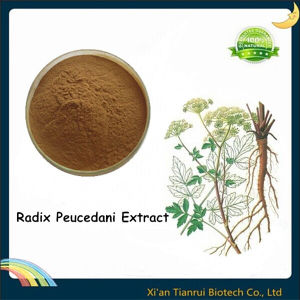 Hogfennel Root Extract Powder, Radix Peucedani Extract pictures & photos