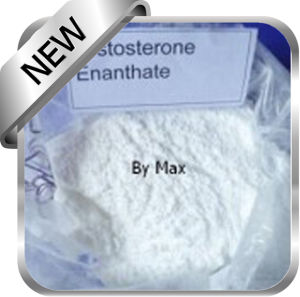 Testosterone Enanthate Medicine Raw Powder pictures & photos