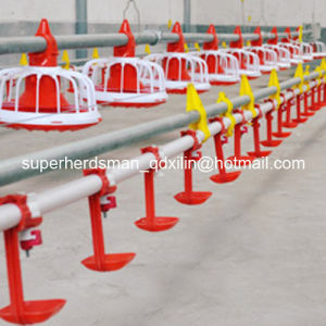 Hot Sale Automatic Poultry Farm Equipment for Chicken pictures & photos
