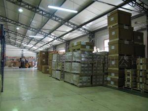 Free Shipping China to Chennai USD0/Cbm Zero Freight pictures & photos