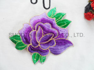 Custom Logo Sew on for DIY Badge Garment Embroidery Patch pictures & photos