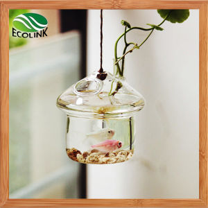 Hanging Glass Flower Vase / Fish Tank pictures & photos