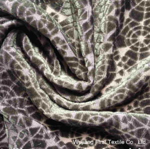 Burn out Silk Velvet Fabric, Silk Rayon Velvet Fabric pictures & photos