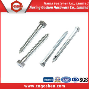 DIN571 HDG Carbon Steel HDG Hex Self Drilling Wood Screw pictures & photos