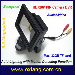 PIR Motion Sensor Night Vision HD 720p Security Camera with LED Light pictures & photos