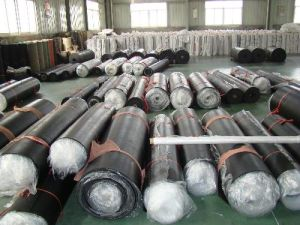Neoprene Rubber Sheet, Neoprene Sheets, Neoprene Sheeting with Kinds of Color pictures & photos